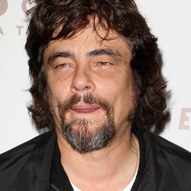 "Benicio Del Toro: Keine Rolle in ""Star Trek"""