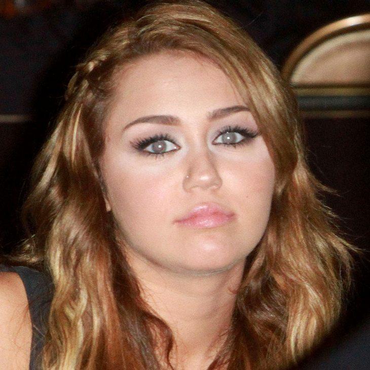 Miley Cyrus: Hund beim Shoppen aufgelesen