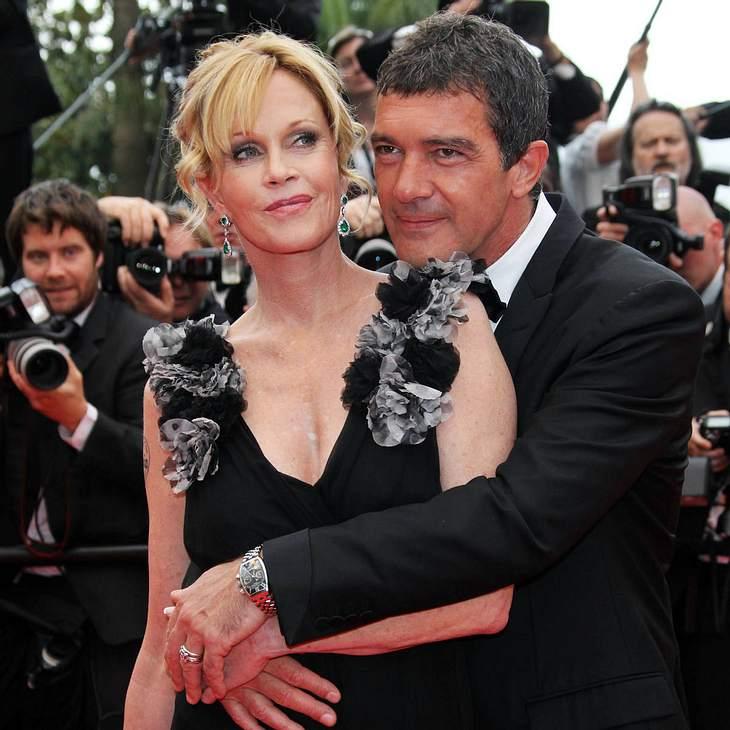 Antonio Banderas: Hauptrolle für Melanie Griffith