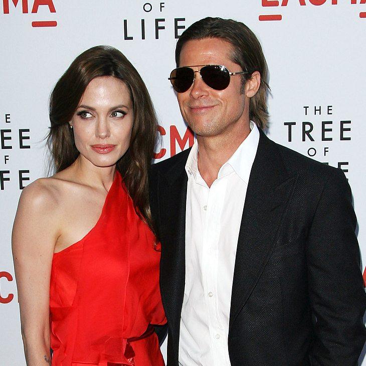 Angelina Jolie: Keine heimliche Hochzeit