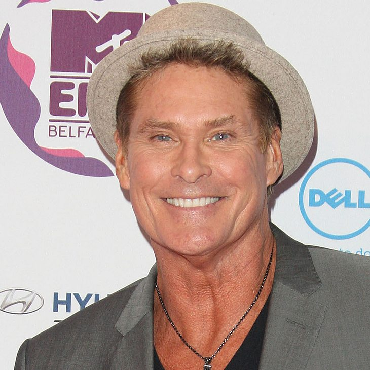 David Hasselhoff bettelt Simon Cowell um Job an