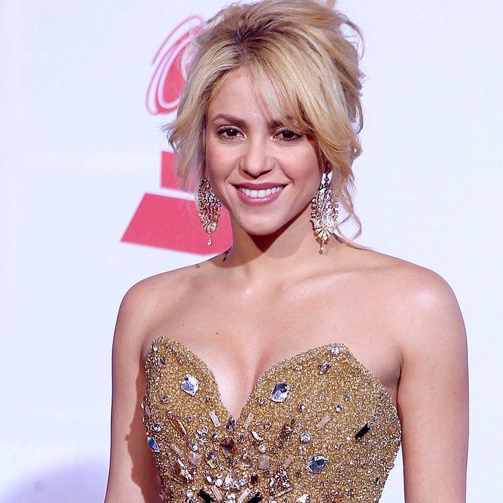Shakira: Von Seelöwen angegriffen