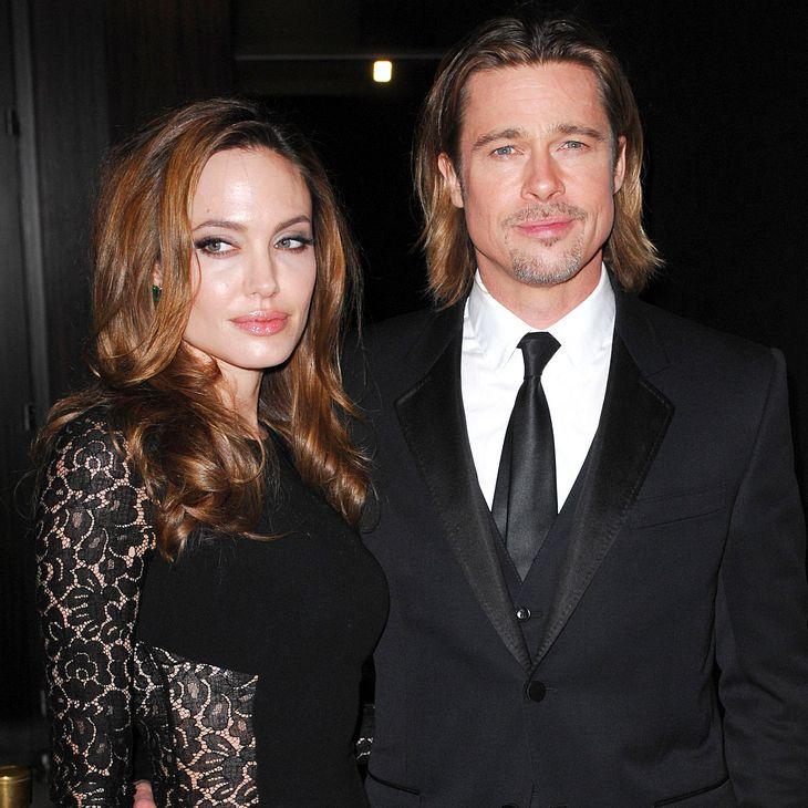Brad Pitt & Angelina Jolie diskutieren über die Arbeit