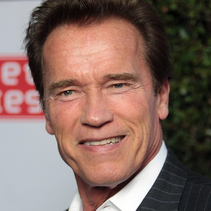 Arnold Schwarzenegger sucht Bild für Biografie