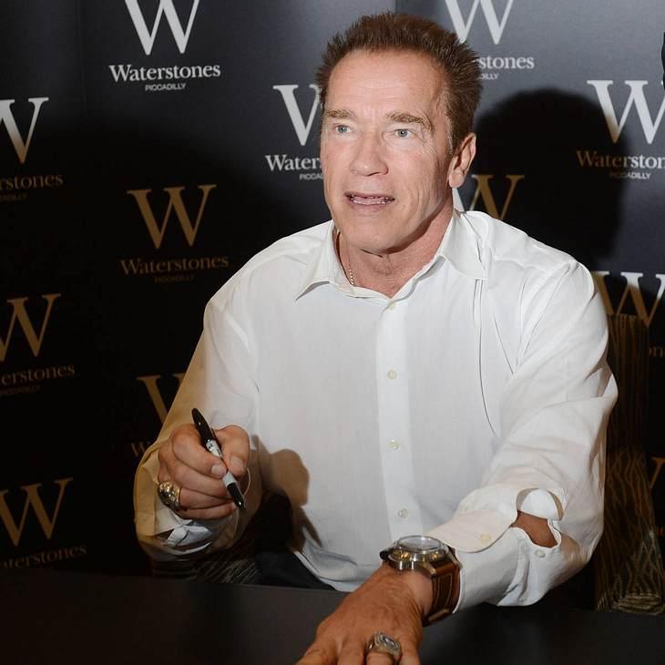 Arnold Schwarzenegger: Unpolitisch in Österreich