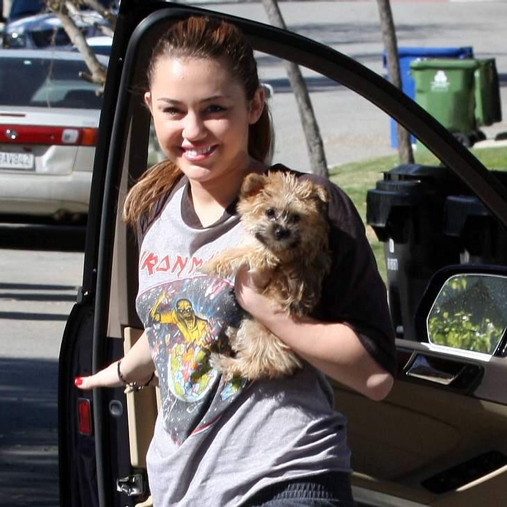 Miley Cyrus trauert um ihren Hund