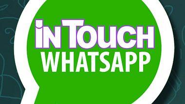 WhatsApp: Jetzt eigene Spruchtafeln im Status designen