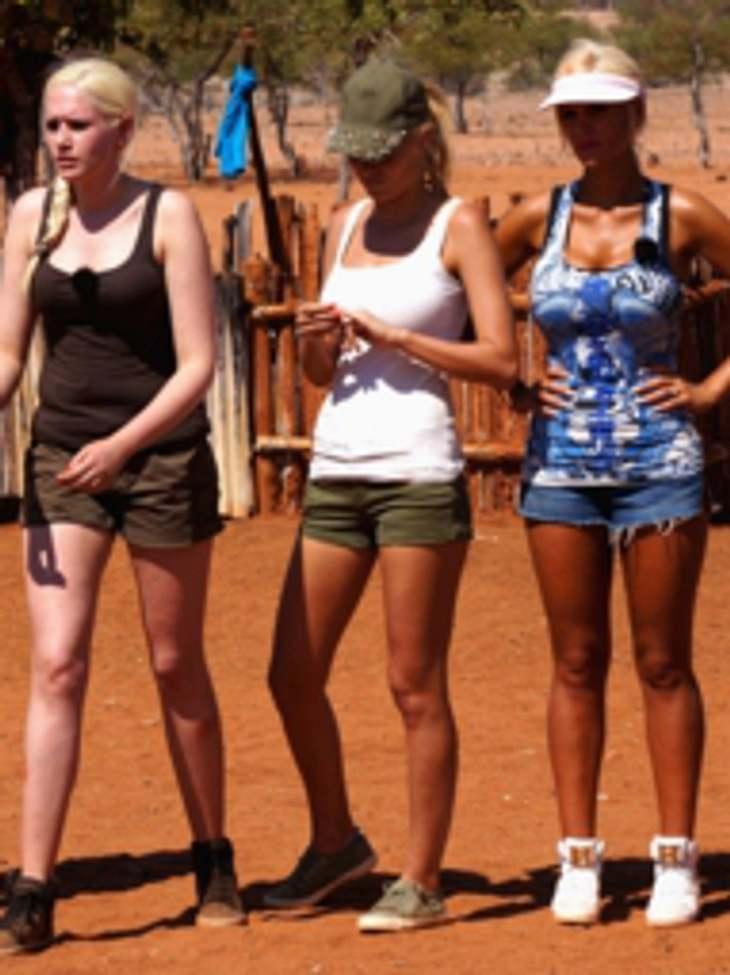 Die Wild Girls zeigen zu viel nackte Haut!