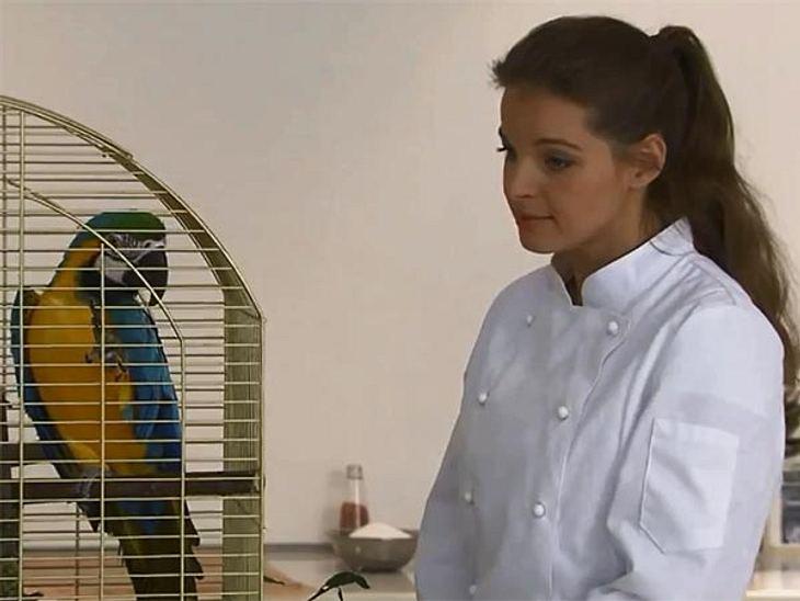 Yvonne Catterfeld wird vor versteckter Kamera von einem Haufen Kindern und einem Papagei in den Wahnsinn getrieben