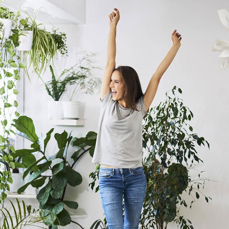 Grüne Gesundmacher: Diese Wunderkräfte haben Zimmerpflanzen!